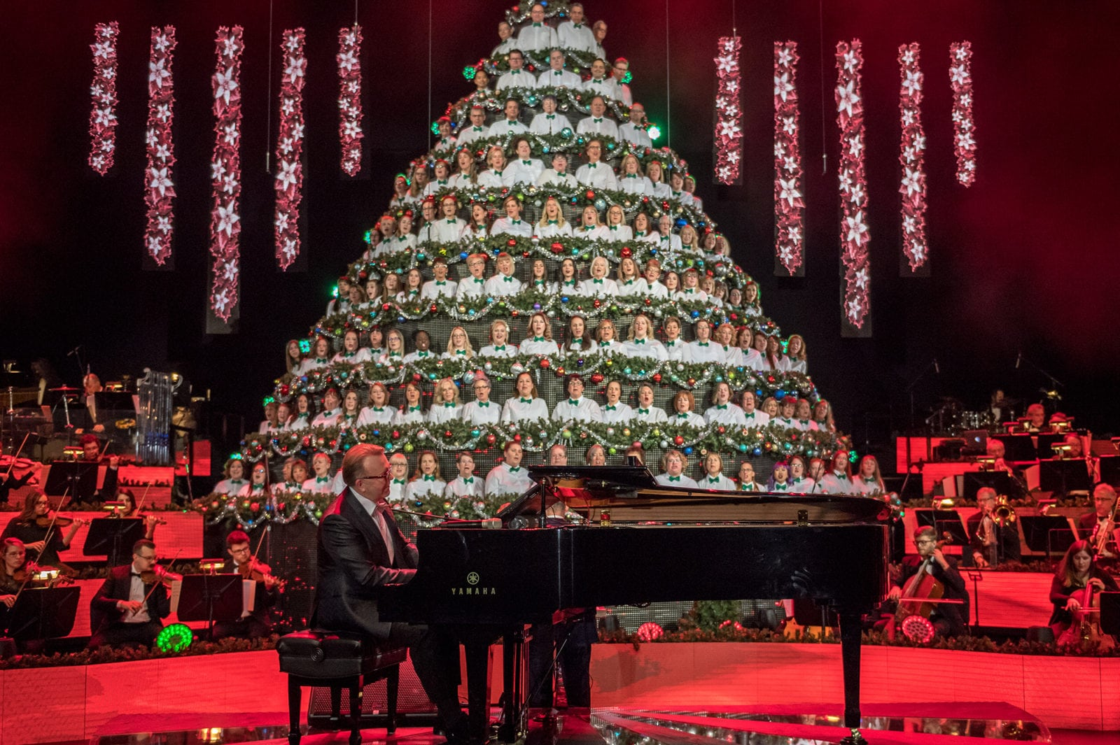 Singing Christmas Tree By Focus Communications